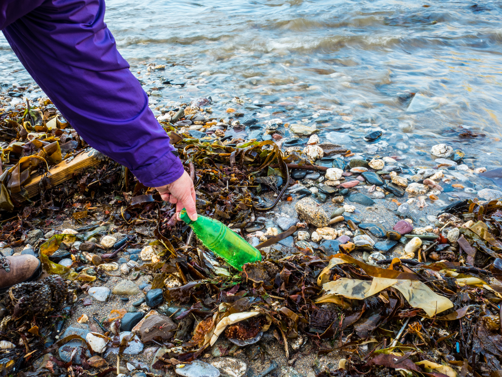 EPR Club | Marine litter: What role for Extended Producer Responsibility?